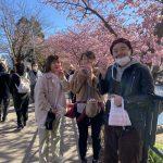 ARUGOと河津桜と、、